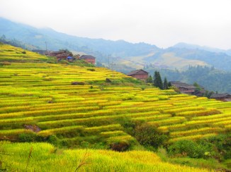 The LongJi Rice fields in Guangxi