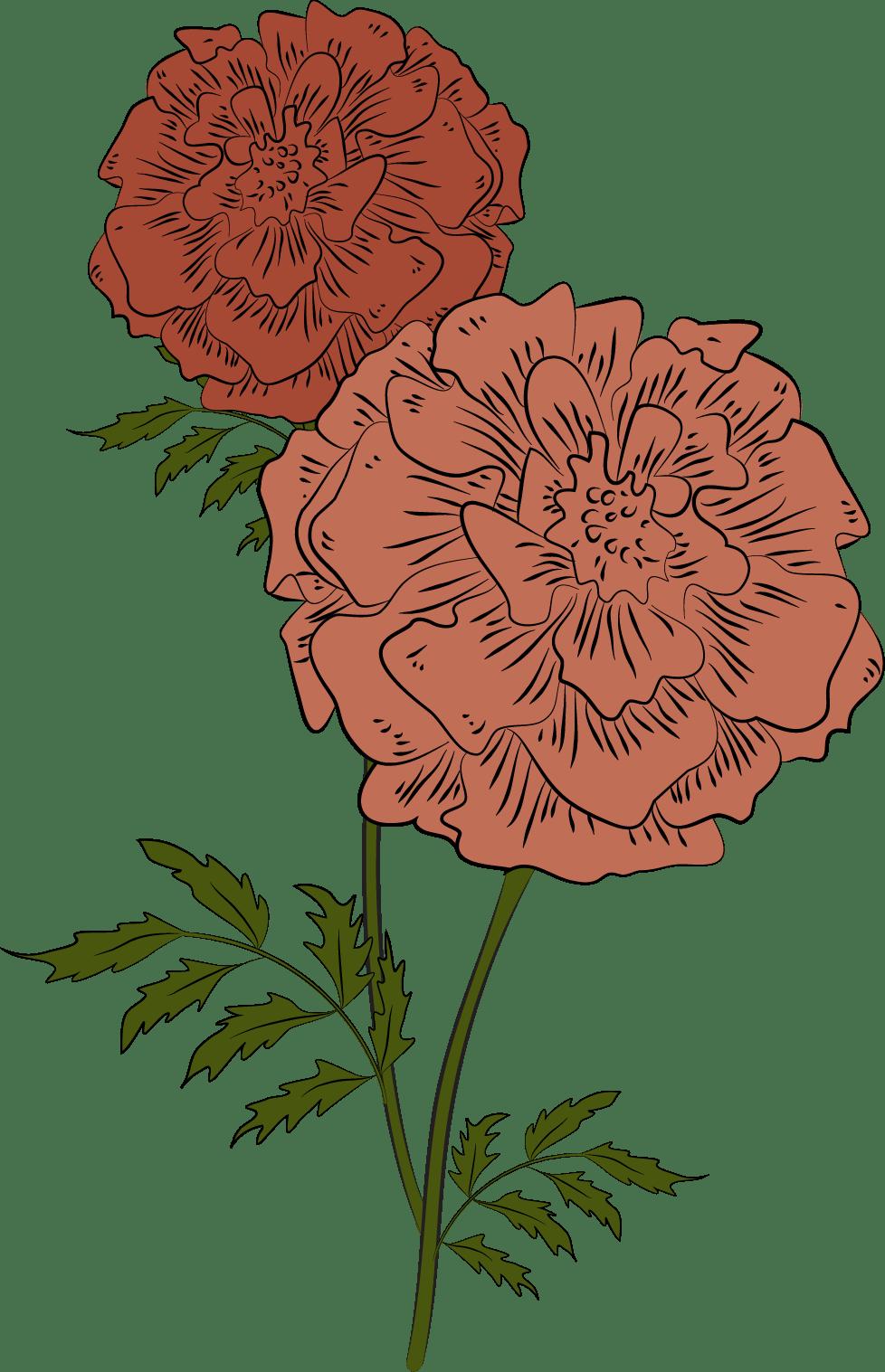Marigold + Vase