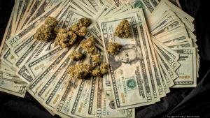 See the price of Cannabis in your area!