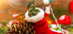 Poll: 64% of Respondents to Replace Alcohol with Cannabis During Holidays