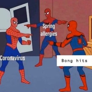 Spider Man… Wait a Minute