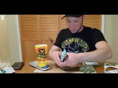 Mail Order Marijuana Dispensary Review For Cheebas
