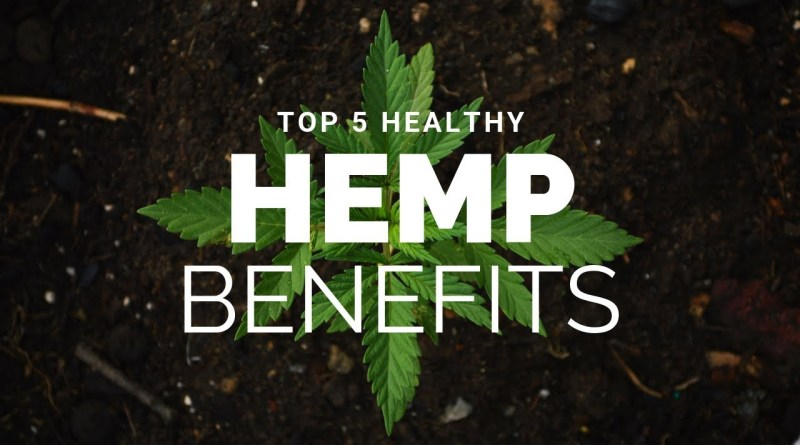 Top 5 Healthy Hemp Benefits!