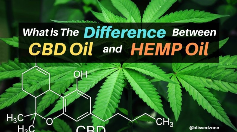 What is The Difference Between CBD Oil and Hemp Oil