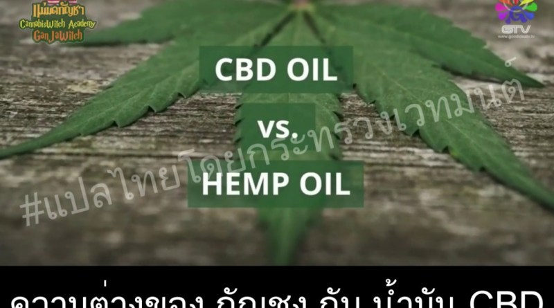 CBD Oil Vs Hemp Oil  [SUB-TH]