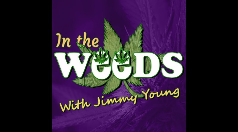 From roofer to cannabis media, Mark Nejmah on In The Weeds with Jimmy Young
