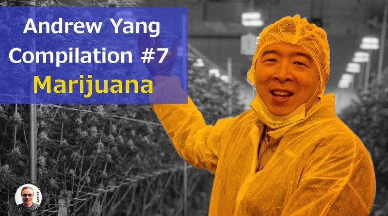 Andrew Yang Compilation #7 – Policy on Legalizing Marijuana and Pardons