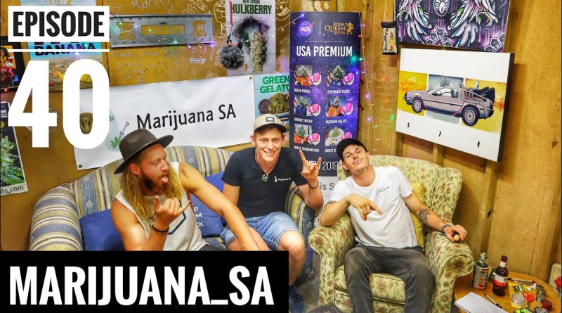 Marijuana SA Weekly Episode 40 Celebrations