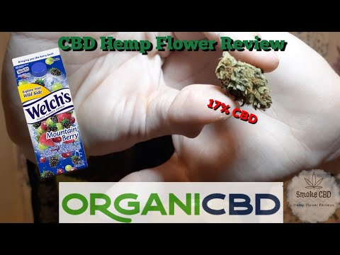 Exclusive Strain | Mountain Berry by OrganiCBD | CBD Hemp Flower Review