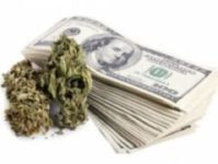 HOW TO START A BUSINESS IN THE MARIJUANA INDUSTRY COURSE 100-B