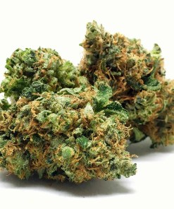 Buy Orange Kush Online