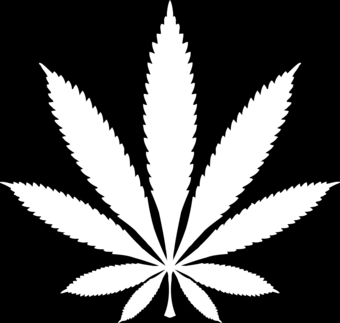 Cannabis / Marijuana Leaf