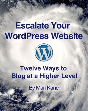 escalate-your wordpress website