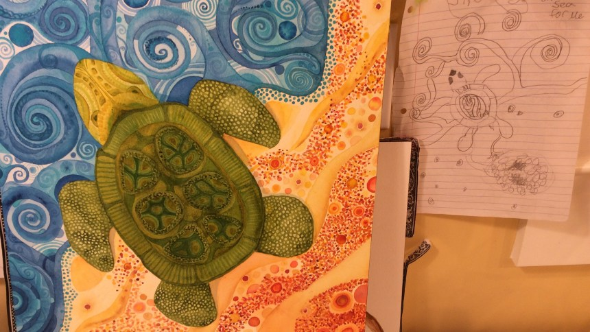 Danas turtle
