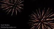 riverbanks fireworks 2013 (5)