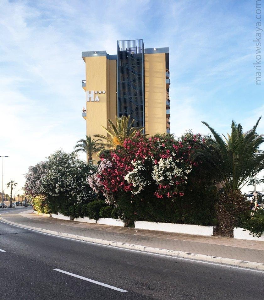 la manga - hotel 15