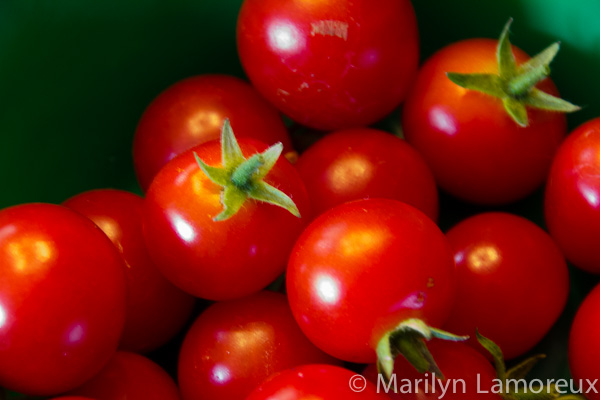 Cherry tomatoes from my garden