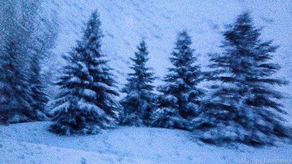 iPhone image taken from car