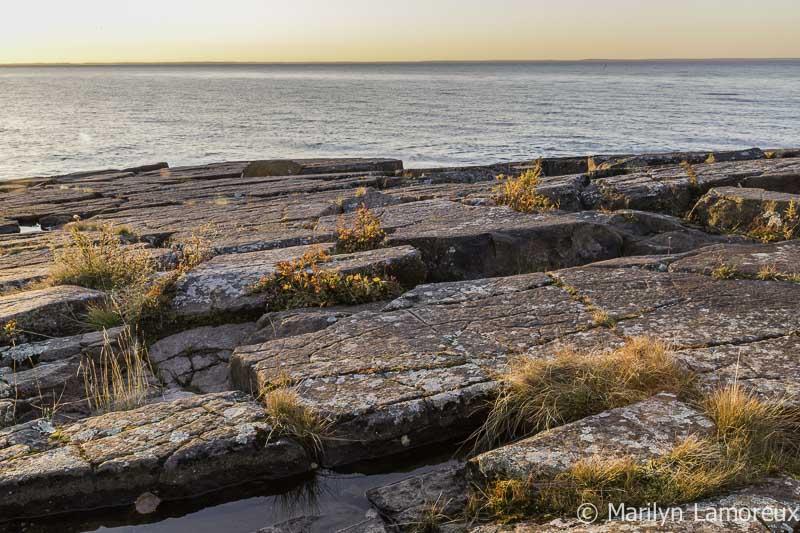 Rocky shoreline at dawn