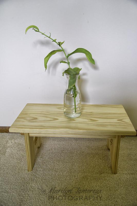solomons seal in vase