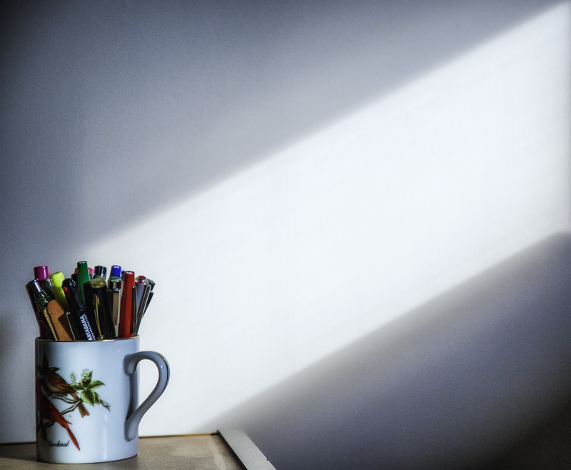 Photo of the Week — Morning Light