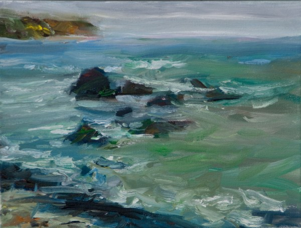 Marin County Chapter - Surfrider Foundation