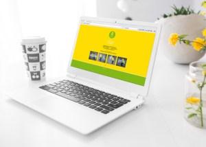 Website-pflegeteam_web