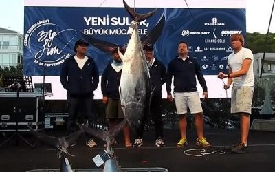 Big Fish Türkiye 2021 Çeşme Marina'da Başladı