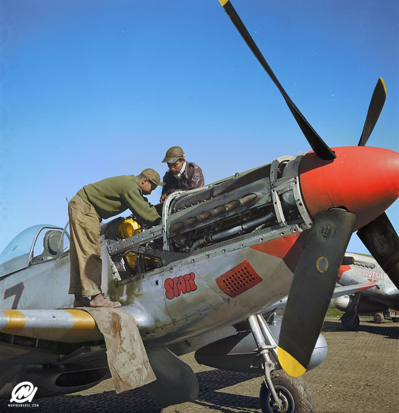 The Tuskegee Airmen – Marina Amaral