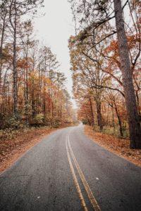 φθινοπωρινός δρόμος