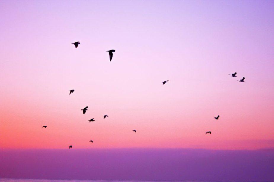 ροζ-ουρανός