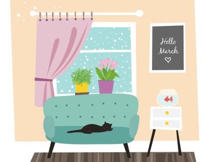 πράσινος καναπές-μαύρη γάτα-γεια σου Μάρτιε