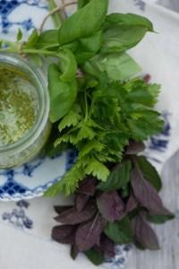 Grøn sauce opskrift