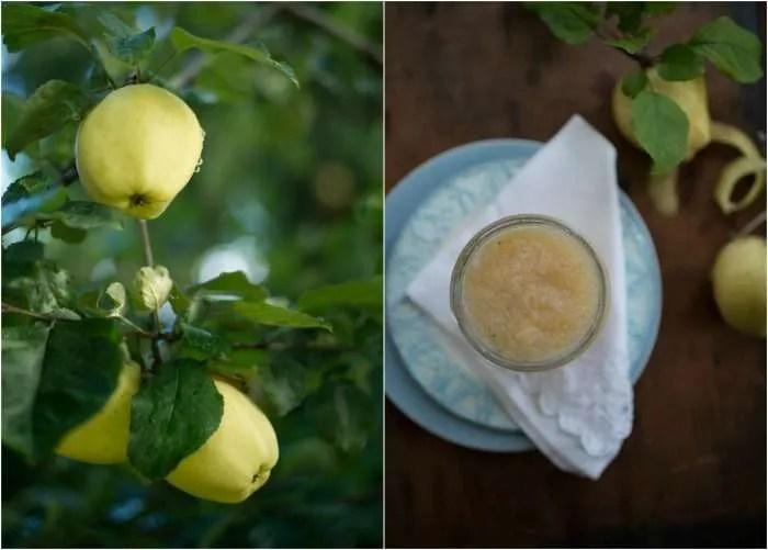 Billeder med æblemos
