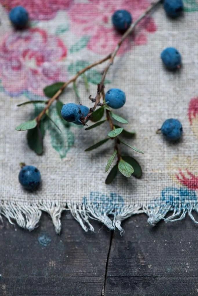 Vilde danske blåbær