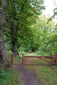 Fusing Ø skov