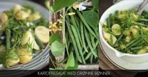 Opskrift på kartoffelsalat med grønne bønner