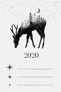 Nytårsfortsætter 2020