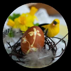 Hårdkogte æg farvet med æggeskaller opskrift
