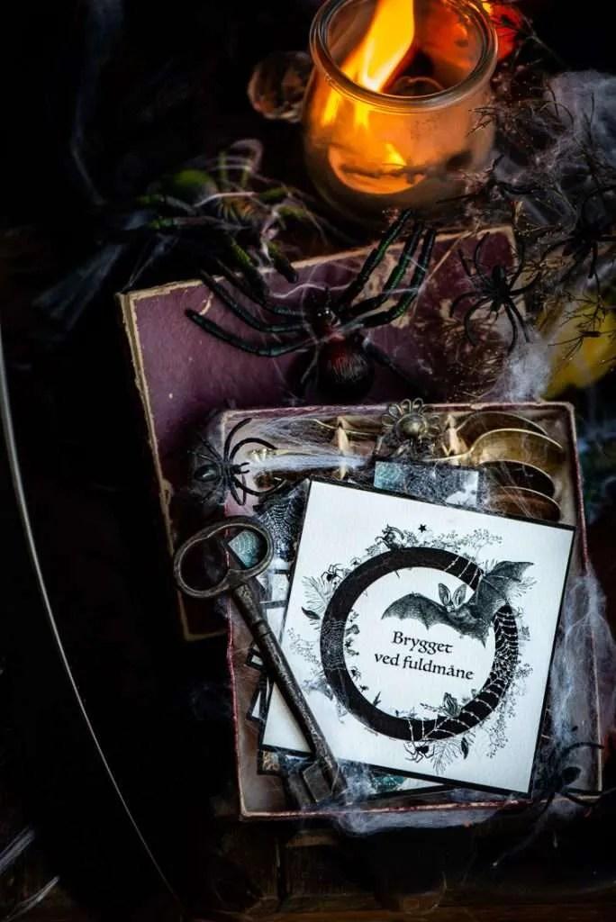 Halloween etiket omgivet af magisk ild og edderkopper