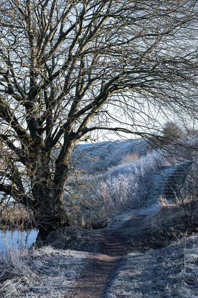 Vinter ved Vandkraftsøen Holstebro