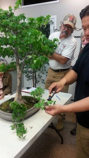 Trident pruning
