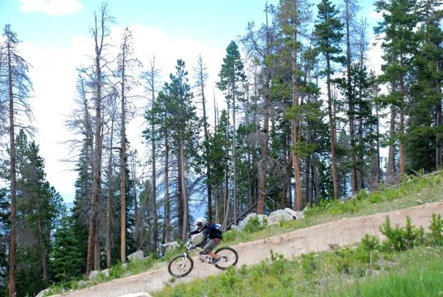 Downhill mtb
