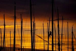Scuttlebutt Photos: Sailing photos