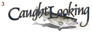 caughtlooking 3 - caughtlooking_3