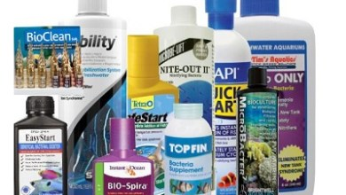 Photo of Essential Additives or The Chemicals