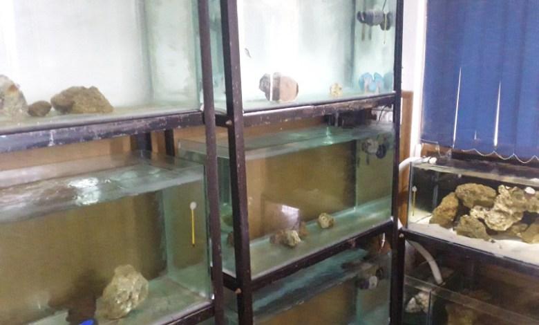 Home Reef Aquarium Shop