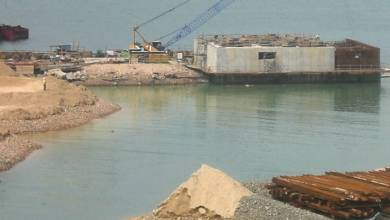 Photo of Corals Halt Infrastructure Project Worth $14 Billion in Mumbai