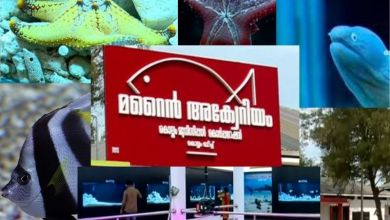 Photo of Kollam Corporation in India Opens Marine Aquarium at Kollam Beach