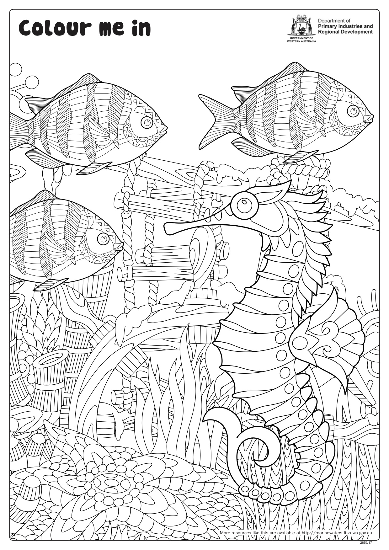 Fishy Fun Sheet Sergeants And Seahorse
